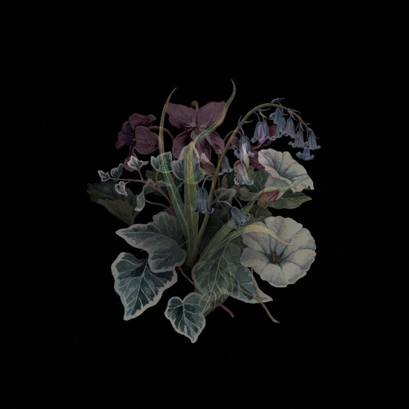 Nhor - Wildflowers Vinyl 2-LP Gatefold  |  Black