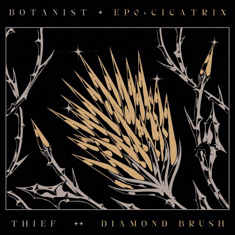 Thief - Cicatrix / Diamond Brush (Split with Botanist) Vinyl LP  |  Black