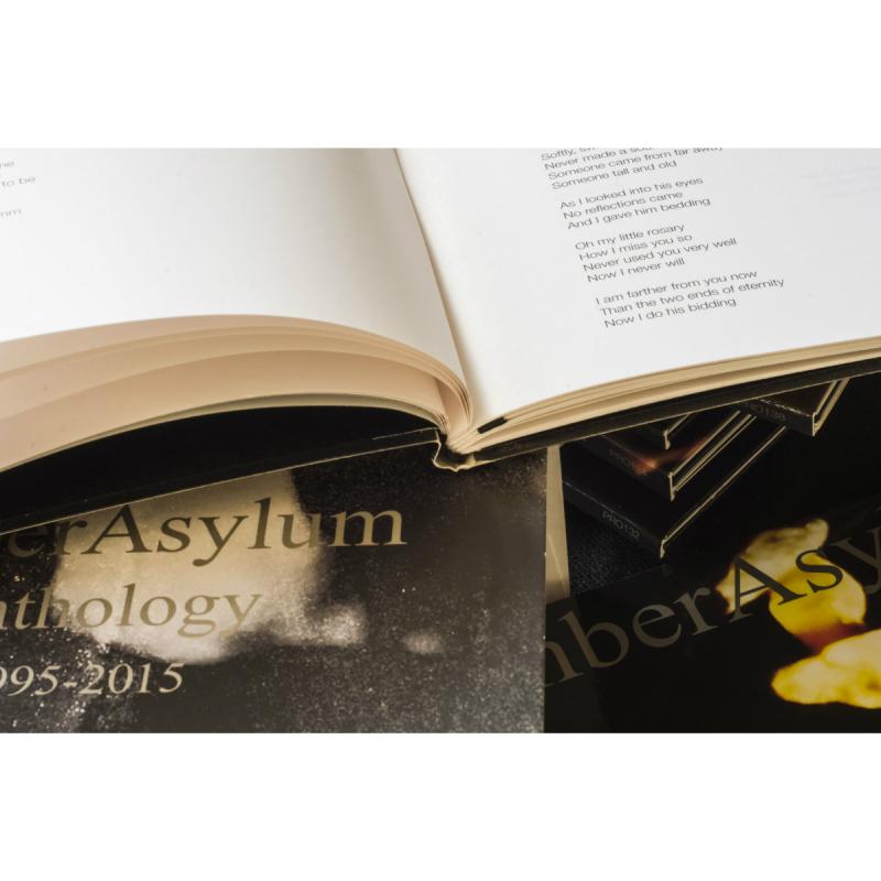 Amber Asylum - Anthology Box