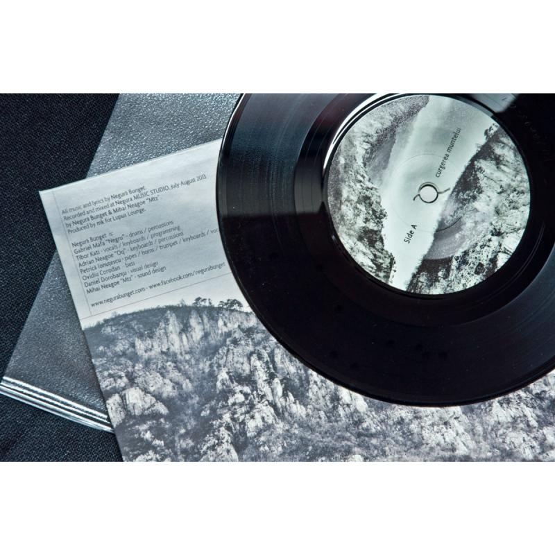"Negura Bunget - Gînd a-prins  Vinyl 7""  |  black"