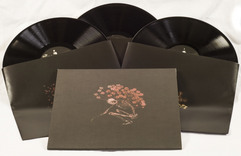 Tenhi: Vinyl re-issues of complete back catalogue out January 27